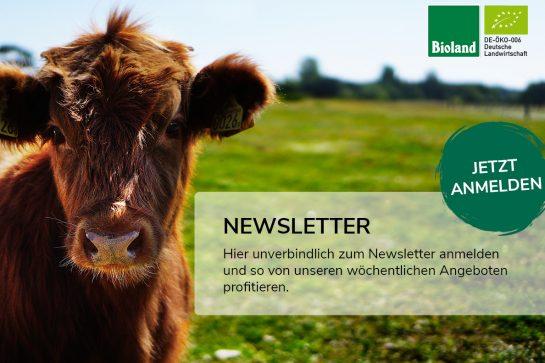 newsletter_fricke-banner